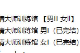 X情大师训练馆【男女课 I  II】四套已完结