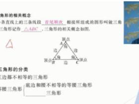 wm大学王志轩初中数学八年级上