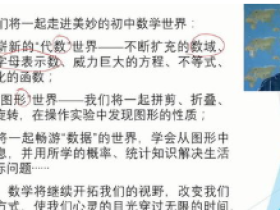wm大学王志轩初中数学七年级上